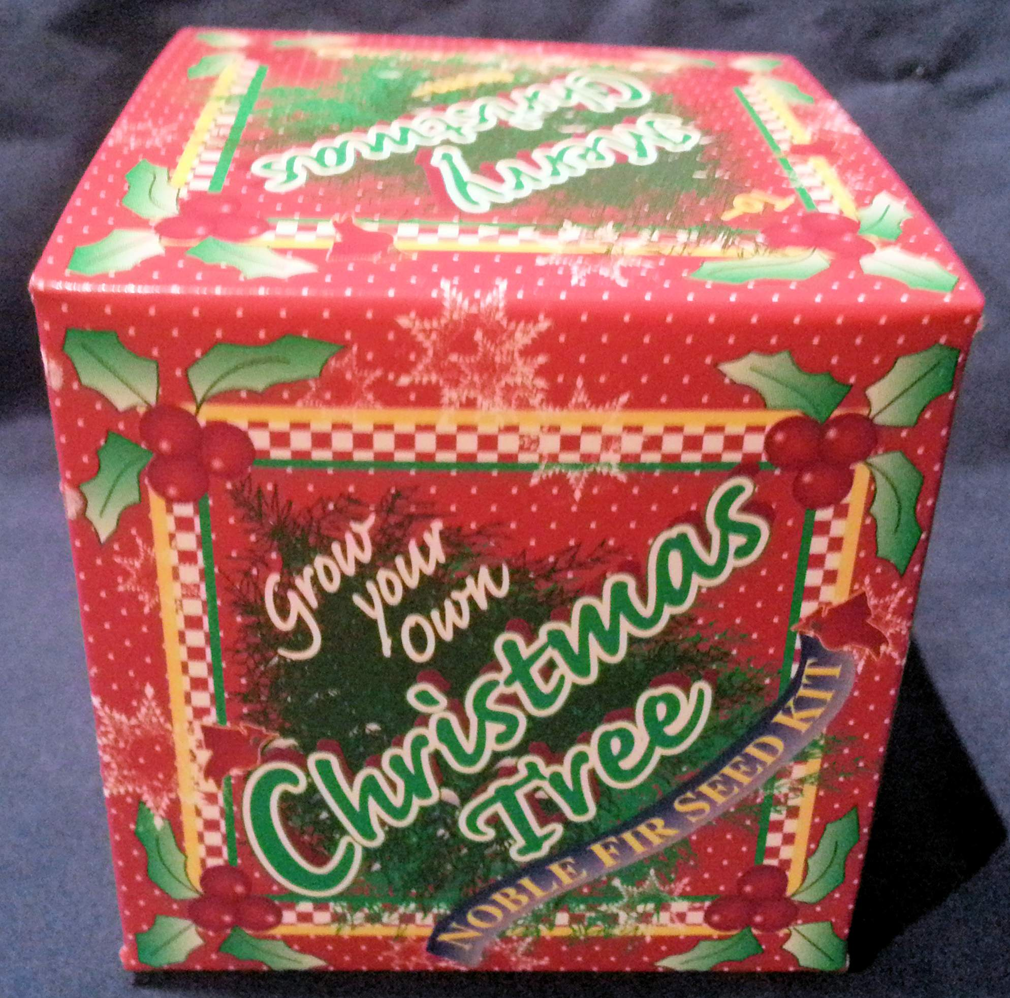 Red original Grow Your Own Christmas Tree Kit